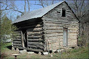 Single Pen Log House